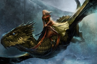 A Song of Ice and Fire Roleplaying - Obrázkek zdarma pro Widescreen Desktop PC 1600x900