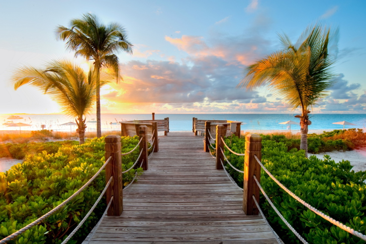 Bridge In Paradise wallpaper