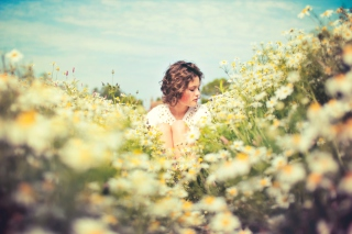 Girl On Daisy Meadow Background for Android, iPhone and iPad