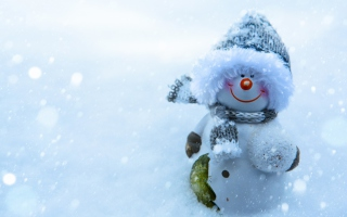 Snowman Covered With Snowflakes Background for Android, iPhone and iPad