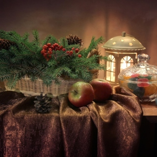 Winter Still Life sfondi gratuiti per iPad mini