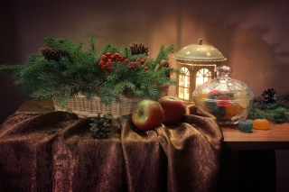 Winter Still Life Wallpaper for Android 480x800