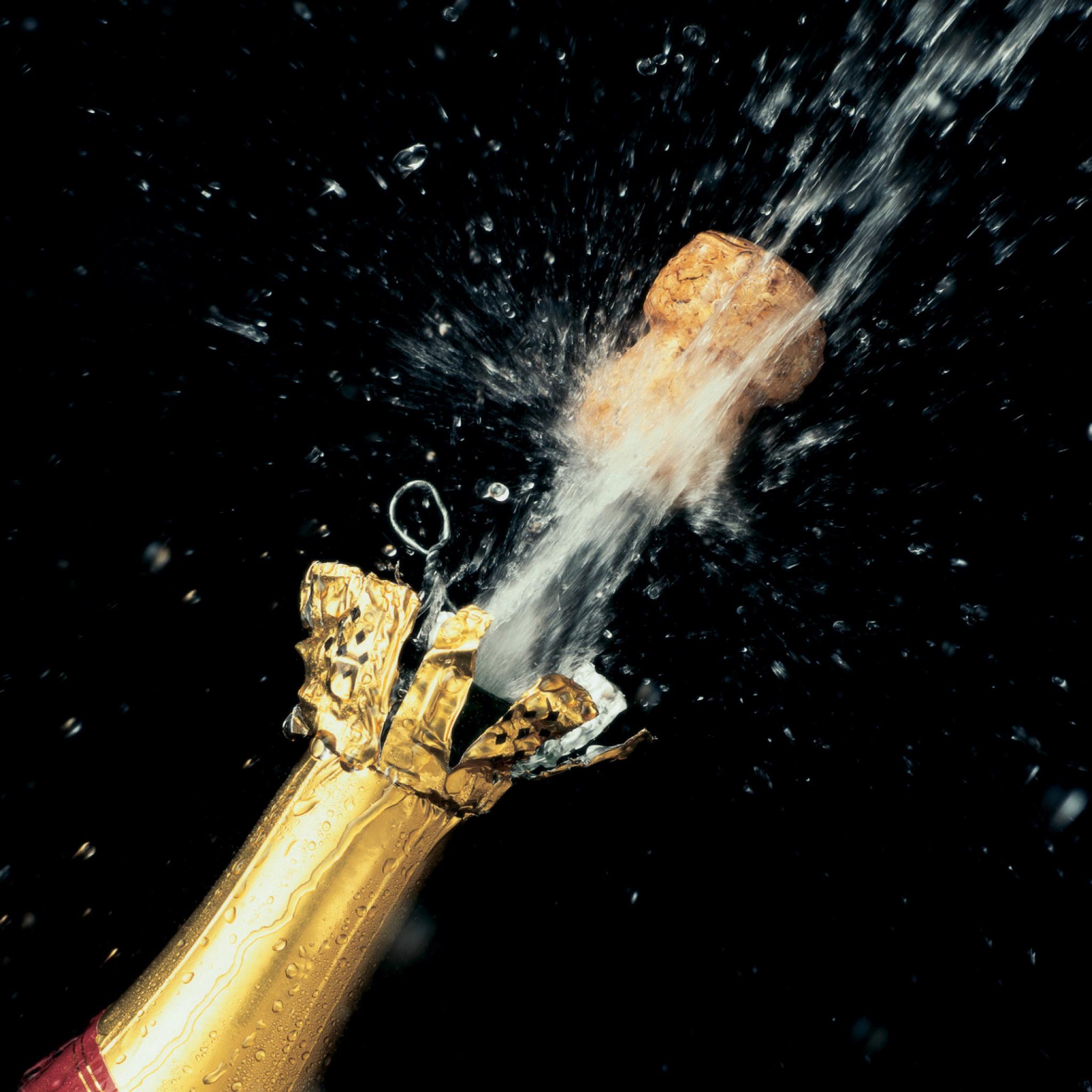 Открытка брызги шампанского, животных