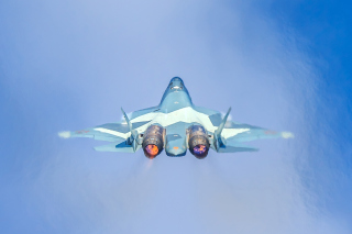 Sukhoi Su 30MKK Wallpaper for 220x176