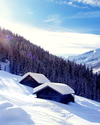 Free Early frosts in Austrian Alps Picture for 240x320