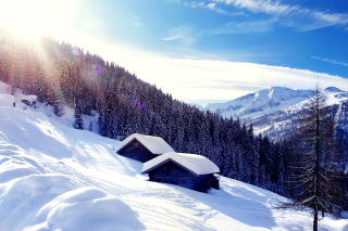 Early frosts in Austrian Alps Background for Android, iPhone and iPad