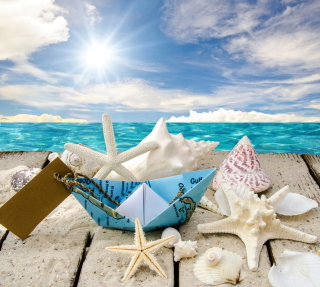 Free Seashells Picture for 1024x1024
