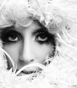 Lady Gaga White Feathers Background for Nokia Asha 306