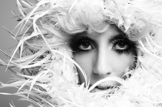 Lady Gaga White Feathers Picture for Android, iPhone and iPad