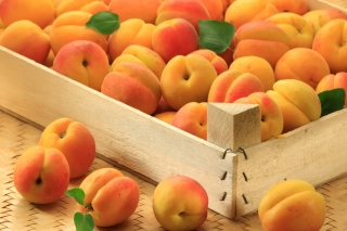 Apricots Background for 960x854