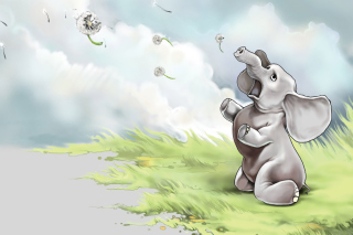 Funny Elephant Background for Android, iPhone and iPad