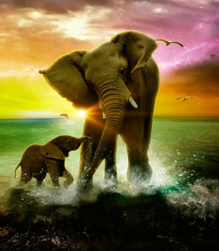 Elephant Family Background for Nokia X1-01