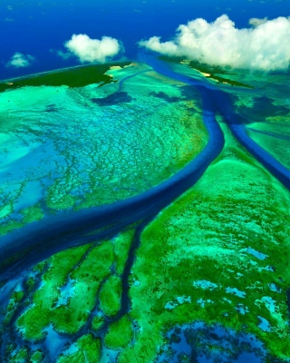 Aldabra Atoll, Seychelles Islands Picture for iPhone 6 Plus