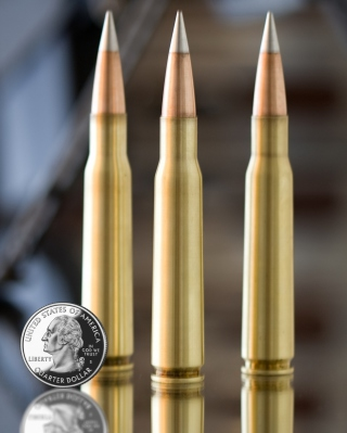 Bullets And Quarter Dollar Background for Nokia Asha 306