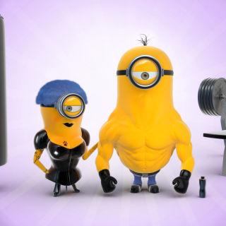 Despicable Me 2 in Gym - Fondos de pantalla gratis para iPad Air