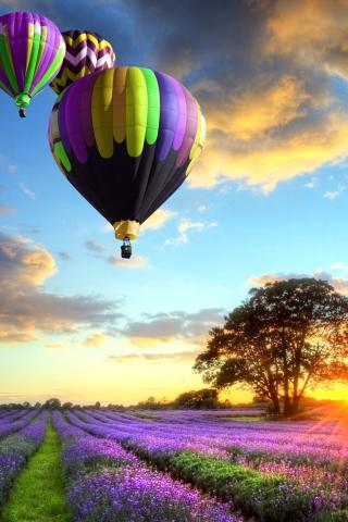 Lavender Field para Huawei G7300