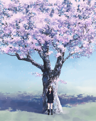Girl And Sakura Wallpaper for Nokia C2-05