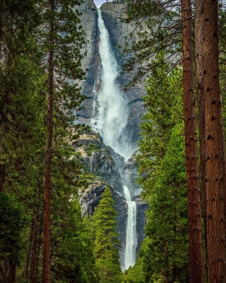 Giant waterfall Picture for 320x480