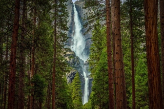 Giant waterfall Picture for Android, iPhone and iPad
