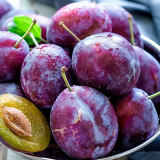 Plums with Vitamins Wallpaper for iPad