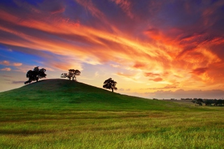 Sunset In California Background for Android, iPhone and iPad