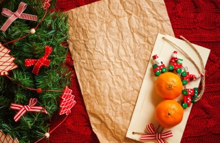 Free Christmas Tangerines Picture for Android, iPhone and iPad