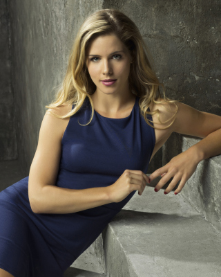 Free Emily Bett Rickards as Felicity Smoak in TV series Arrow Picture for 240x320