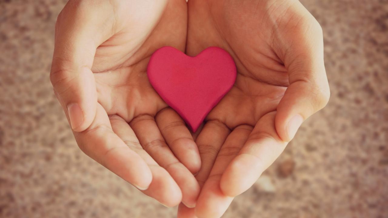 Pink Heart In Hands