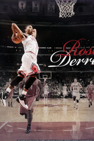 Derrick Rose NBA Star wallpaper 320x480