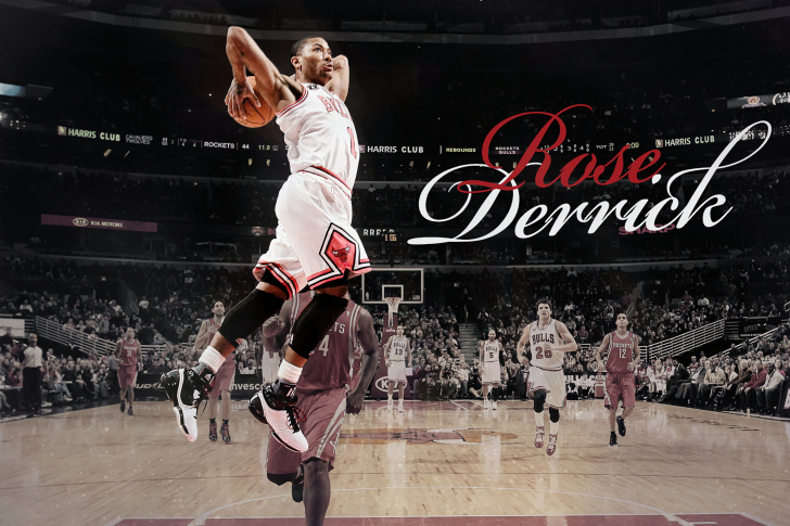Derrick Rose NBA Star wallpaper