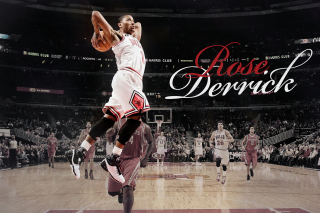 Derrick Rose NBA Star Background for Samsung I9080 Galaxy Grand