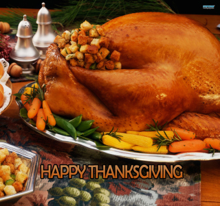 Free Happy Thanksgiving Picture for 128x128