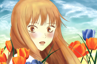 Kimi Ni Todoke Wallpaper for Nokia XL