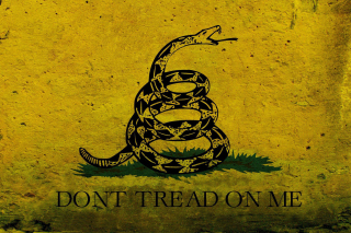 Kostenloses Gadsden flag, Dont tread on me Wallpaper für 640x480