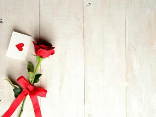 Love Letter And Red Rose for Nokia Asha 200