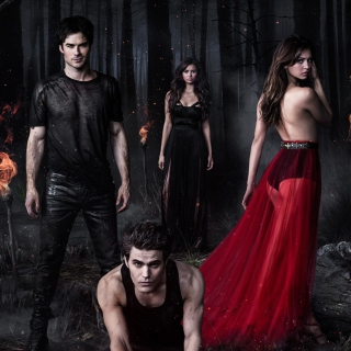 The Vampire Diaries with Nina Dobrev sfondi gratuiti per iPad mini