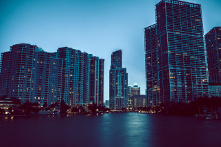 Free Miami Night HD Photo Picture for 1680x1050