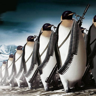 Penguins Soldiers sfondi gratuiti per iPad mini