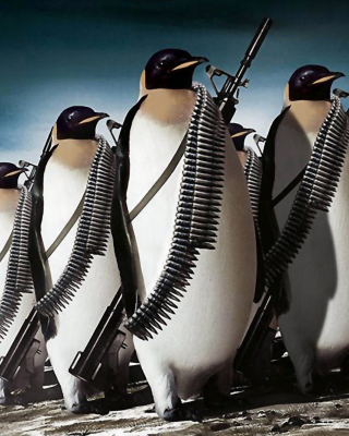 Penguins Soldiers Background for Nokia Asha 306