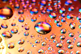 Kostenloses Refraction in Water Wallpaper für Android, iPhone und iPad