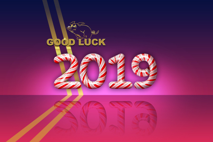 Good Luck in New Year 2019 wallpaper