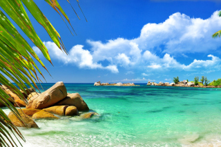 Aruba Luxury Hotel and Beach Background for 1200x1024