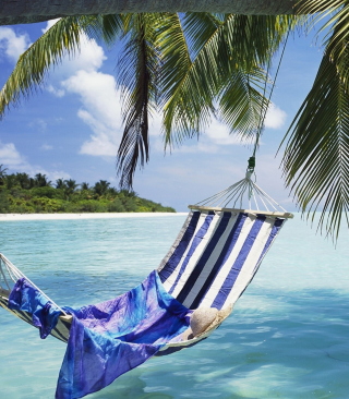 Hammock Under Palm Tree Wallpaper for HTC Titan