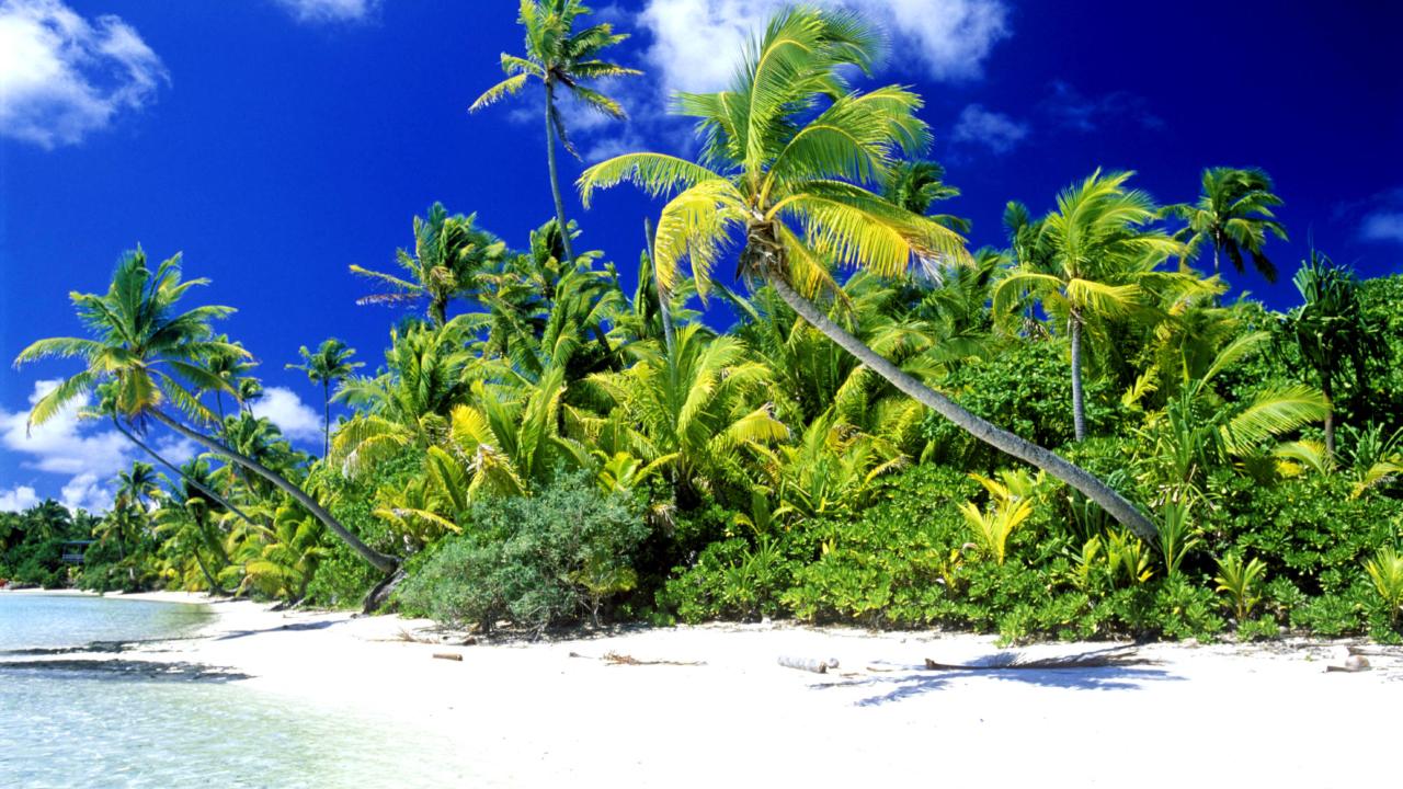 Palm Beach, Melanesia