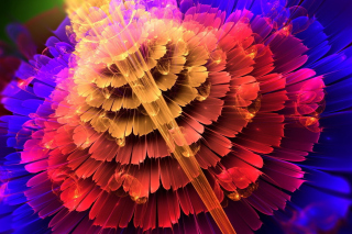 Colorful Form Wallpaper for Desktop 1280x720 HDTV
