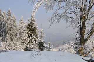 Snow landscape Wallpaper for 1366x768