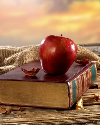 Apple And Book Wallpaper for Nokia Asha 503