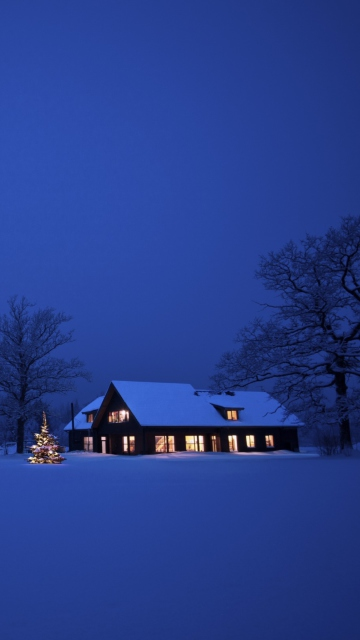 Lonely House, Winter Landscape And Christmas Tree