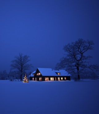 Обои Lonely House, Winter Landscape And Christmas Tree на телефон Nokia Asha 306