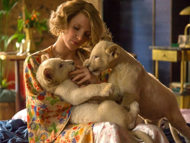 Screenshot №1 pro téma The Zookeepers Wife Film with Jessica Chastain 640x480
